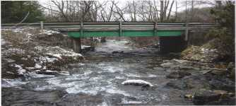 Trout Farm Bridge